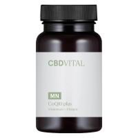 CBD VITAL - CoQ10 plus 60x