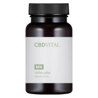 CBD VITAL - Arthro plus 90x