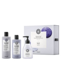Care & Style - Sheer Silver Kit